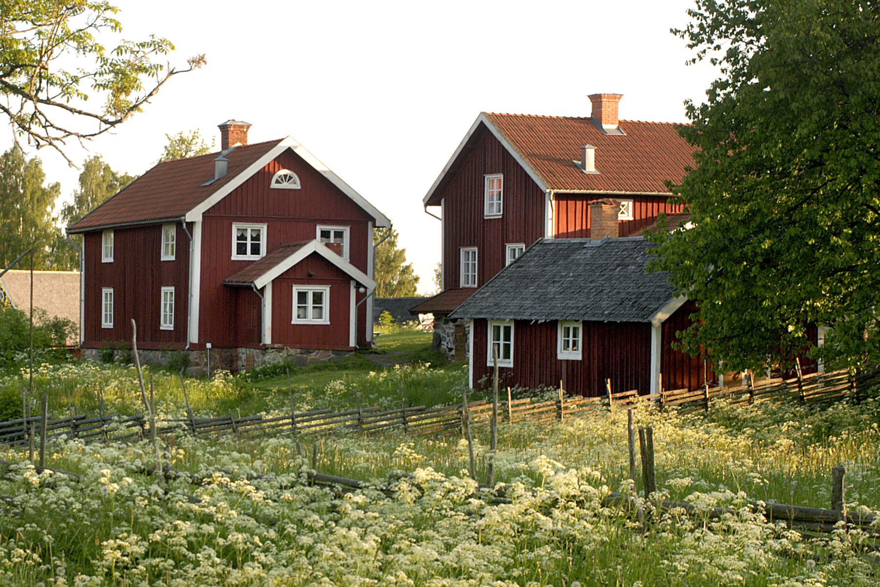 Röda stugor i Åsens by, Småland