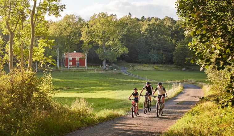 Cyklister i Småland
