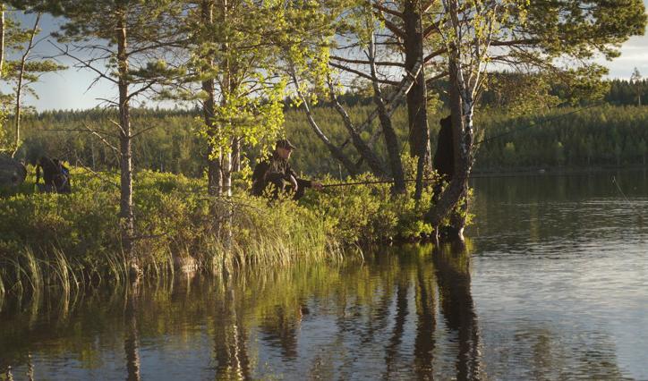 Fiske vid Sällegården